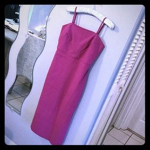 Simple Beautiful Fuchsia Pink Dress Express